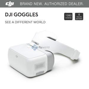 DJI Goggles